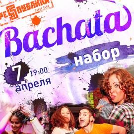 bachata_banner